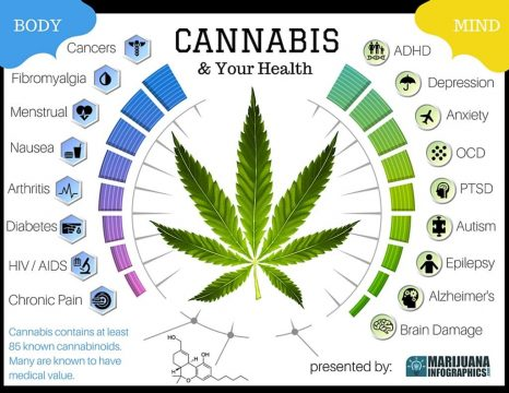 cbd uk, buy cbd syrup , buy cbd oil uk now, buy cbd hemp oil, cannabis pills for pain,buy cbd extract online, cbd oil online sale, cannabis capsules for sale, cbd oil for anxiety for sale,non psychoactive cbd oil for sale,can cannabis oil get you high,cannabis oil for depression
