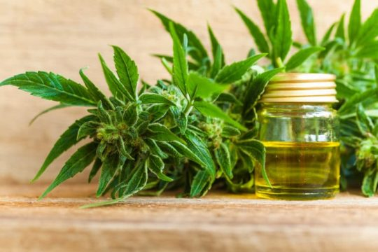 cbd-oil-review-uk, cbd-oil-amazon-uk, CBD-oil-review-uk,ukcbd-benefits-of-cbd