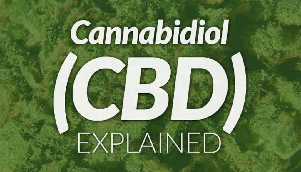 UK CBD News, Can CBD help treat Pancreatic Cancer and Epilepsy